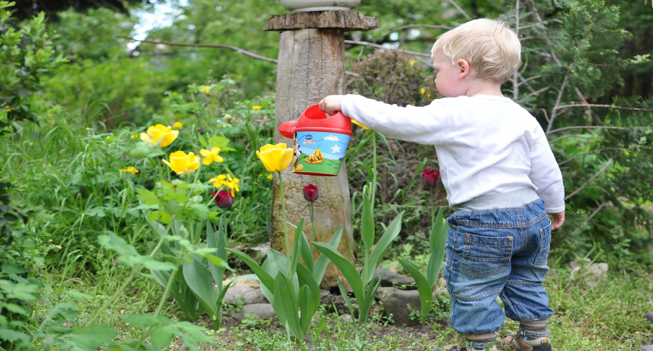 Making Your Garden Fun For The Kids